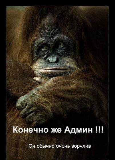ai082.radikal.ru_0807_6f_c7412c836cd4.jpg