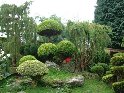 aleit.ru_for_content_garden_garden10.jpg