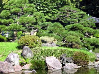 aleit.ru_for_content_garden_japanese_garden_56.jpg