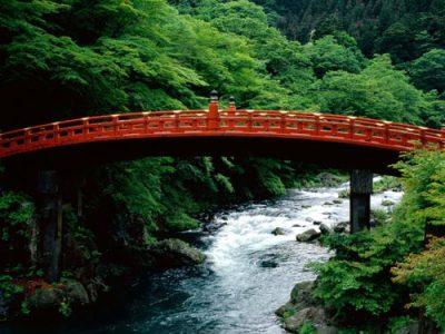 aleit.ru_for_content_garden_japanese_garden_65.jpg