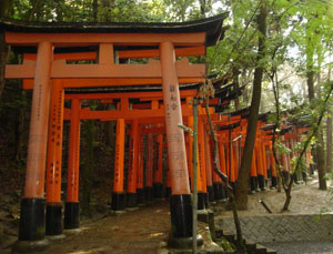 aleit.ru_for_content_sinto_shrine_torii.jpg