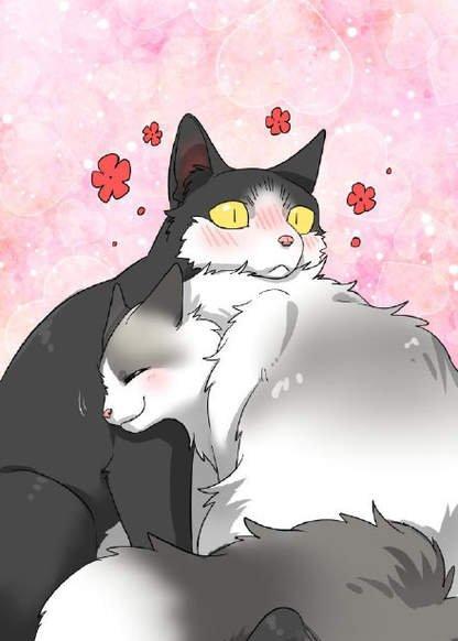 sesame and ricecake